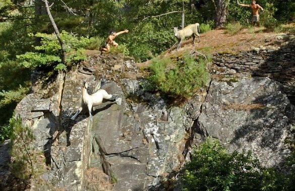 à visiter l'étonnant parc de la préhistoire à Rochefort en terre - Camping Les Parcs