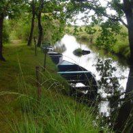 des chalands dans un des canaux de la brière - Camping Les Parcs