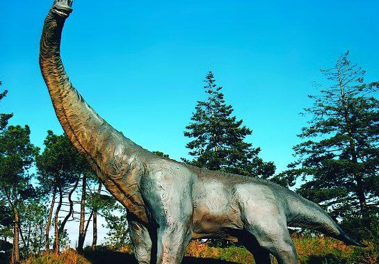 l'univers des dinosaures - Camping Les Parcs